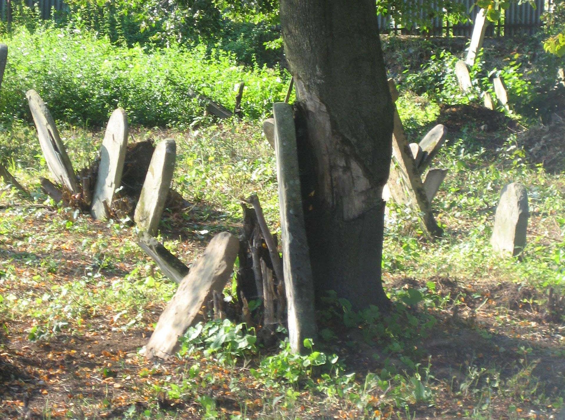 2005 - Bardejov's Jewish Cemetery before restoration